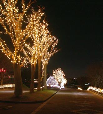 東運動公園3