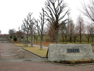 東運動公園1